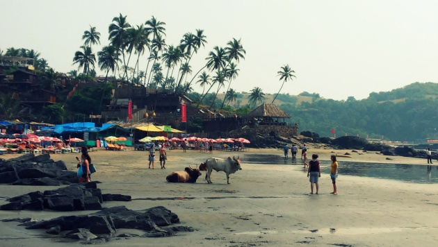 Plaża Vagator