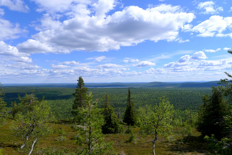 Pallas-Yllastunturi - wiosna w Laponii