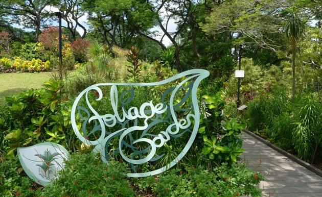 Ogrody Botaniczne Singapur