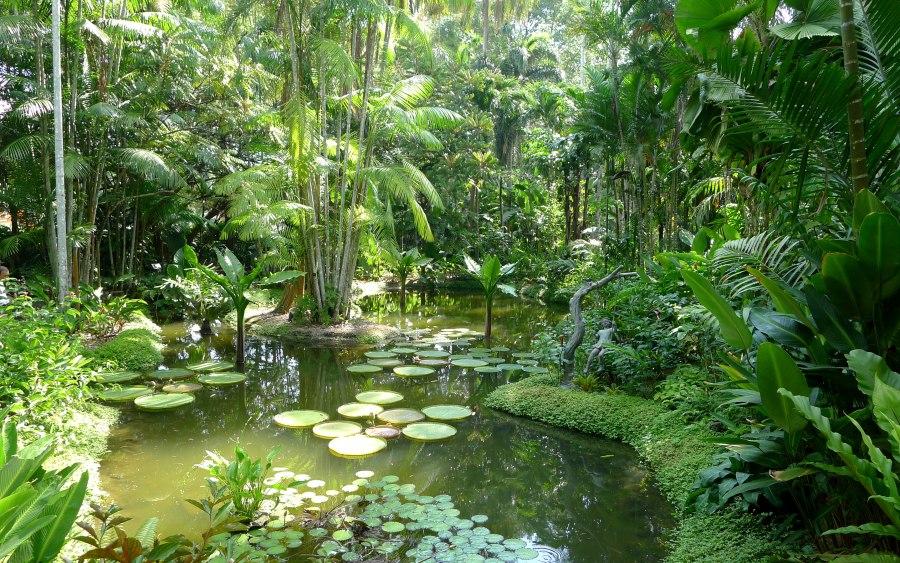 Singapurskie Ogrody Botaniczne