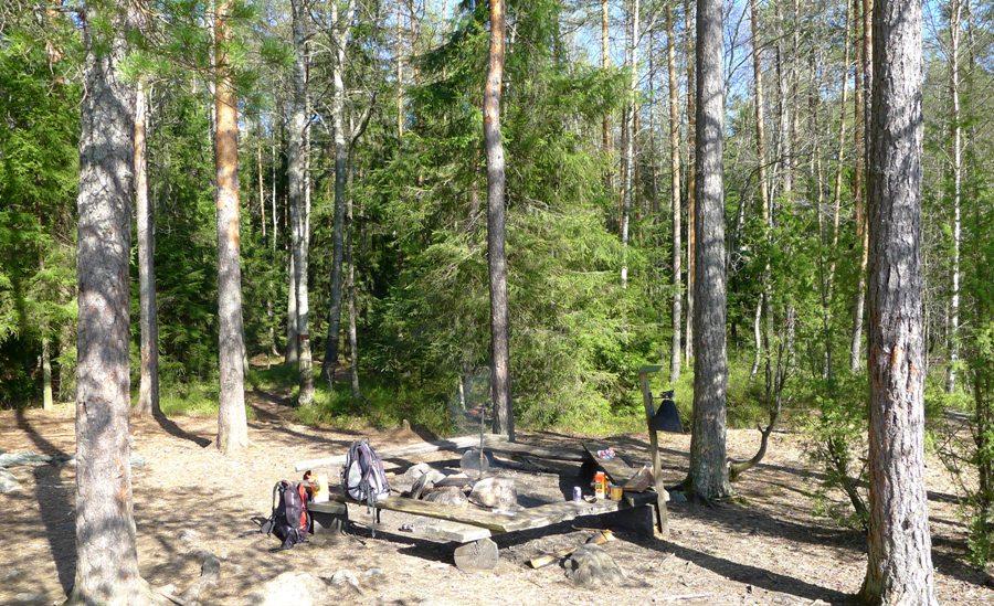 Jedno z miejsc na ognisko w parku Nuuksio