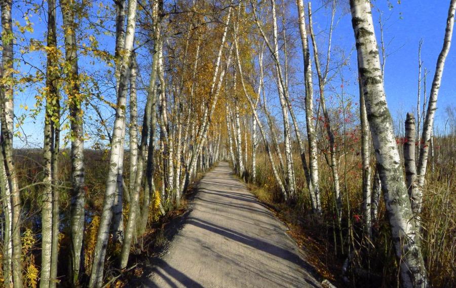 Pogoda w Finlandii - jesień