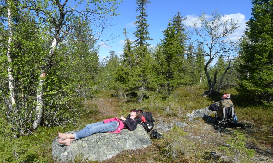 Lato w Laponii