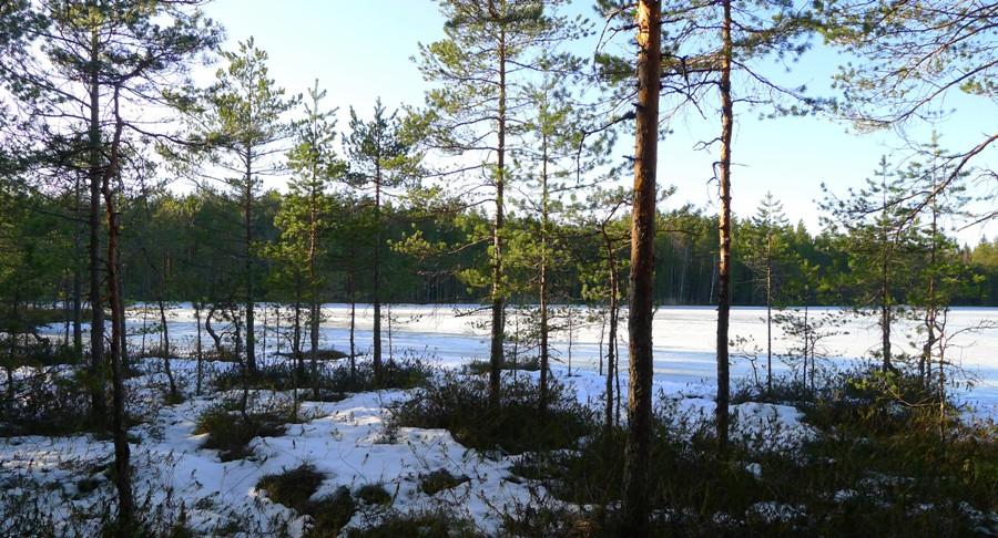 Pogoda w Finlandii - wiosna
