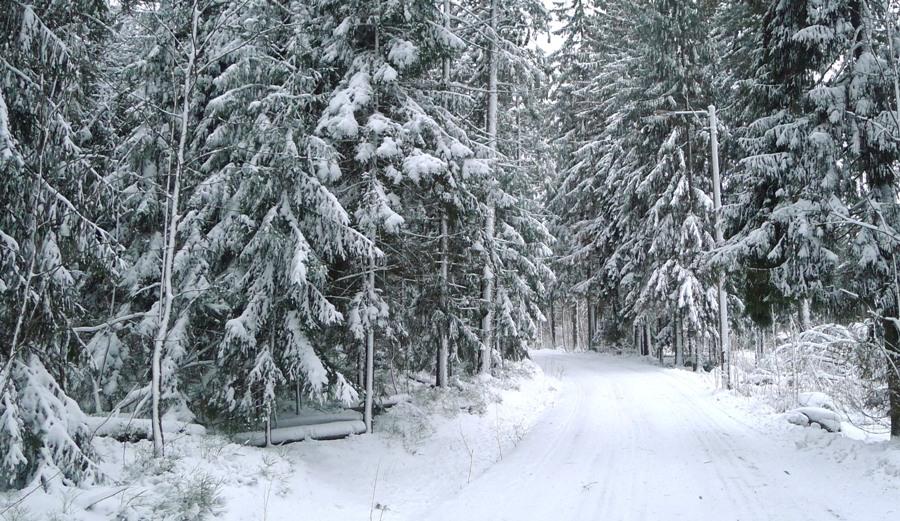 Pogoda w Finlandii - zima