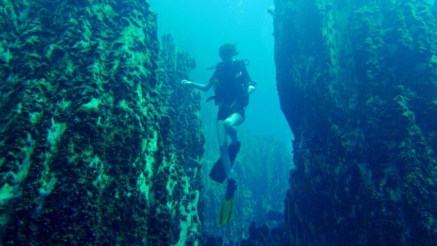 Coron Island - Barracuda Lake