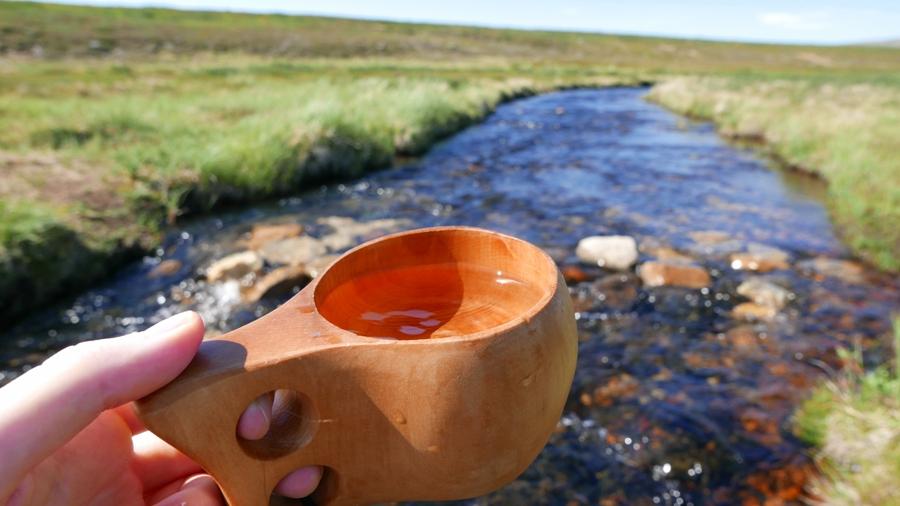 Rezerwat Kevo - lapońska woda