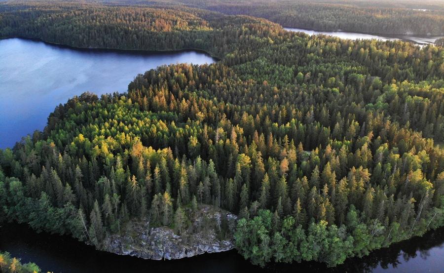Trekking w Finlandii - Nuuksio