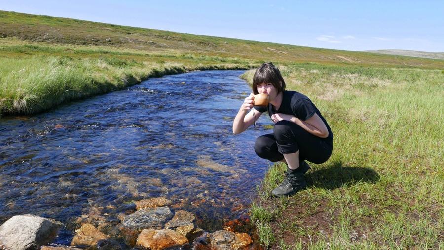 Lapoński strumień