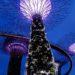 Zwiedzanie Singapuru: Co warto zobaczyć? Plan na 2, 3 dni i więcej